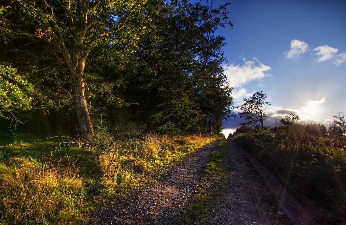 Fairy Tale Lane